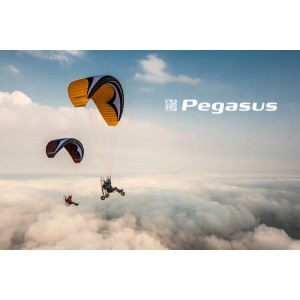 Pegasus PPG